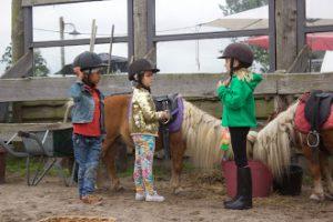 De Bonte Belevenis Assendelft.De Bonte Belevenis Pony En Kinderboerderij Theehuis
